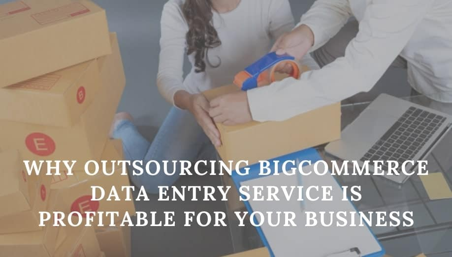 Bigcommerce Data Entry Service