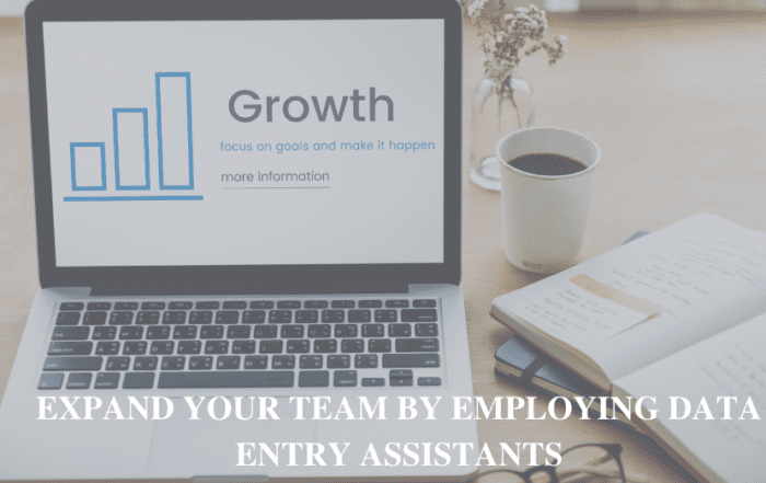 Expand Your Team by employing Data Entry Assistants