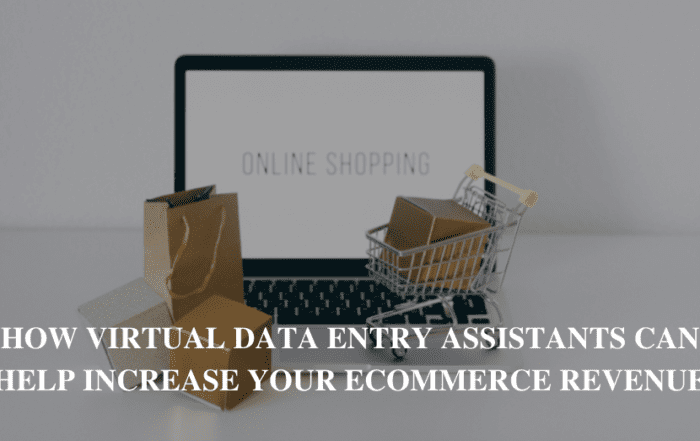 How Virtual Data Entry Assistants Can Help Increase Your eCommerce Revenue