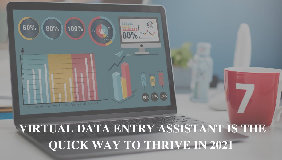 Virtual Data Entry Assistant is the Quick Way to Thrive in 2021